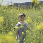 So Much Yellow Film Still